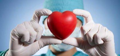 Manos de un cirujano sujetando un corazón antiestrés