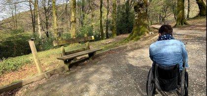 Imagen de una persona en silla de ruedas en un espacio natural